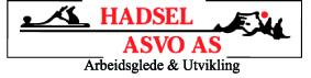 Hadsel ASVO sin logo