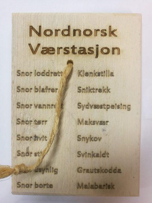 Vearstasjon med nordnorske uttrykk